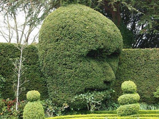 Abbey House Gardens: Green man hedge