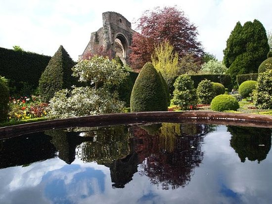 Abbey House Gardens: Abbey reflections