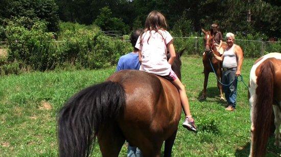 West Sunbury, PA: Horseback riding