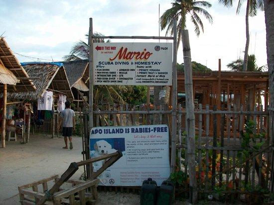 Mario S Homestay Apo Island