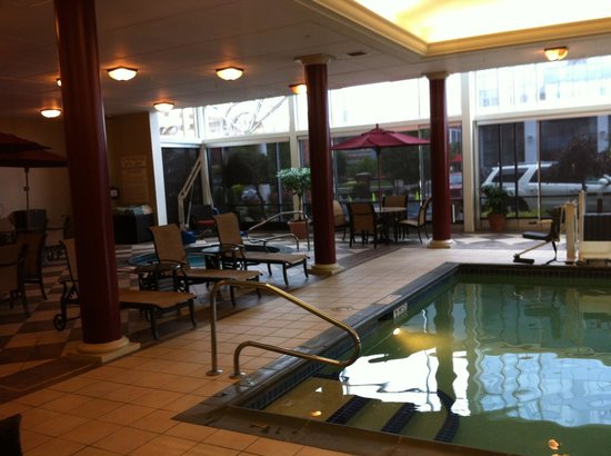 Hampton Inn & Suites Buffalo Downtown : Pool