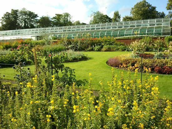 Pittencrieff Park: Formal gardens and greenhouses