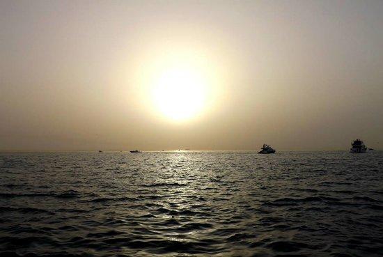 Kobar Island: Sunset.