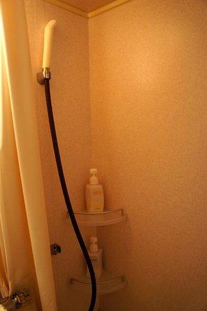 Uwajima Terninal Hotel: シャワー