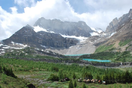 Timberline Tours Ltd. - Private Day Tours: Skoki lakes