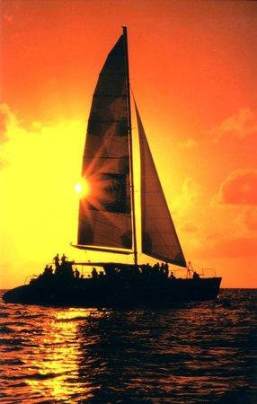 Симпсон-Бей, Сен-Мартен – Синт-Мартен: Tango Dinner Spectacular Sunset