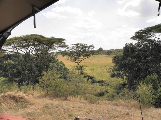 Kicheche Mara Camp: Room with a view