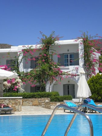 Dionysos Seaside Resort : rooms