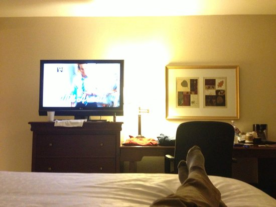 Sheraton Minneapolis West Hotel: View from bed