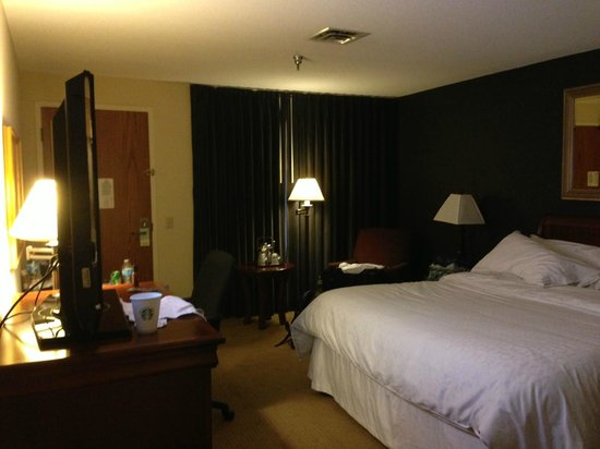 Sheraton Minneapolis West Hotel: Alternate view of king room