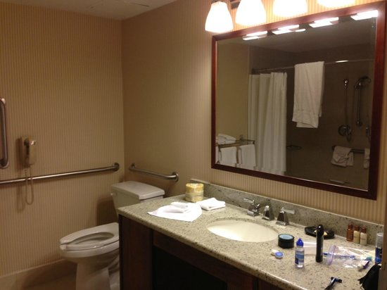 Sheraton Minneapolis West Hotel: Bathroom