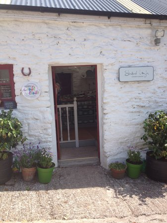 Sinead Lough Ceramist