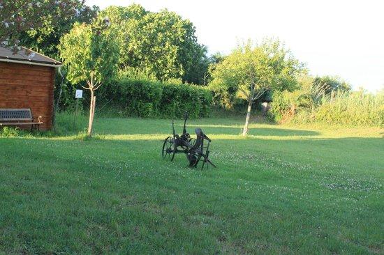 Les Jonchères d'Oleron : vue sur le jardin