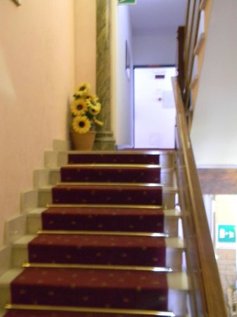 Hotel Terme: scale