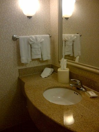 Hilton Garden Inn Kansas City: Bathroom