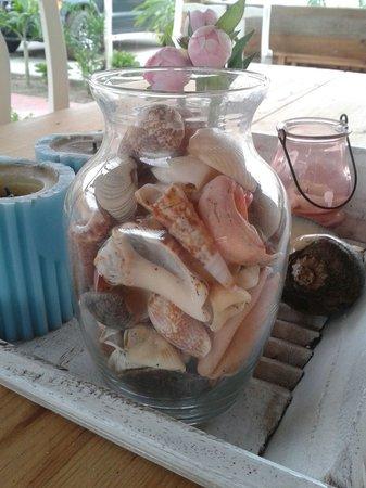 Bed and Breakfast Villa Riviera: Shells fron las Peñitas