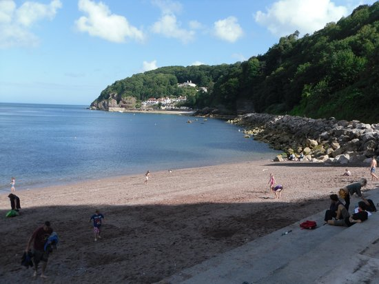 Babbacombe Palms Guest House: Views