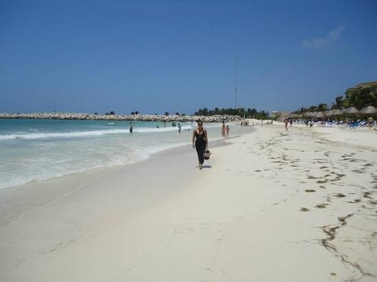Hotel Marina El Cid Spa & Beach Resort: la playa del hotel, tranquila y linda!