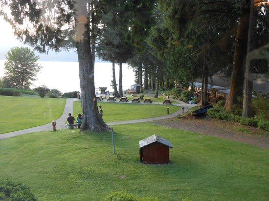 Lake Quinault Lodge: View of some non-lodge rooms