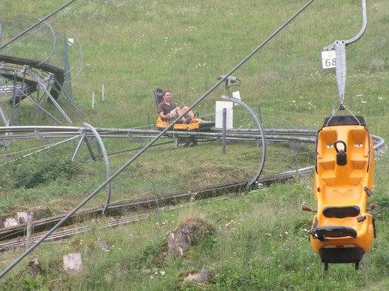 Alpsee Bergwelt: Coaster 1