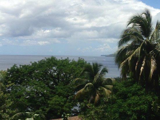 Hummingbird Inn: View from Room