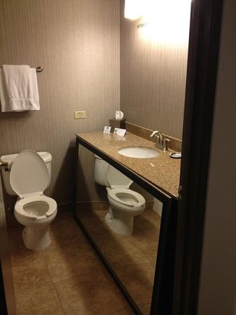 Holiday Inn Express Hotel & Suites Chicago-Deerfield/Lincolnshire: mirror on floor