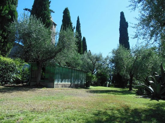 Villa Paradiso : jardin
