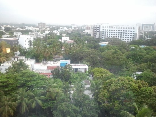 The Raintree Hotel, St.Mary's: views from 701