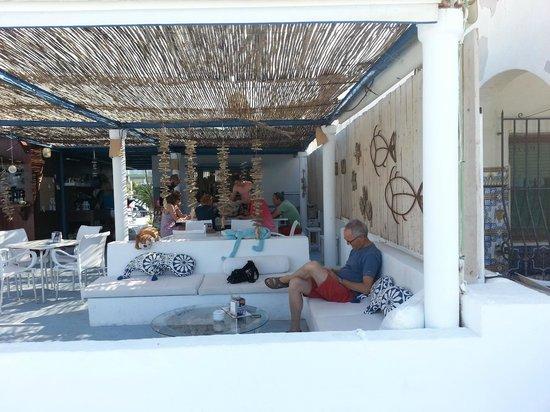 los banos sunshine bar denia restaurant reviews phone