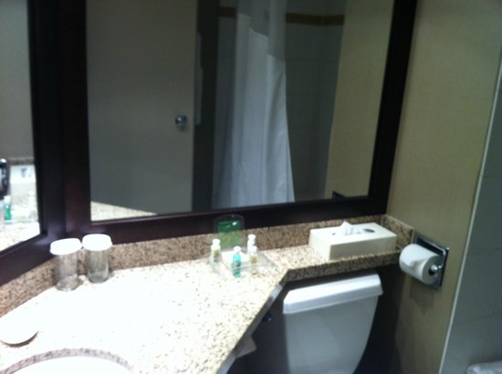 Holiday Inn Hotel & Suites Vancouver Downtown: Bathroom