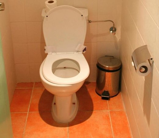 Hôtel Tildi & SPA : Toilette