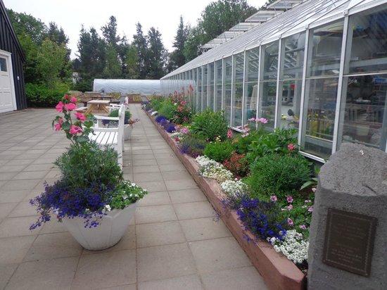 Icelandair Hotel Akureyri: Invernadero del Jardín Botánico