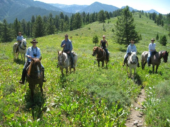 Spotted Horse Ranch : in the mountains