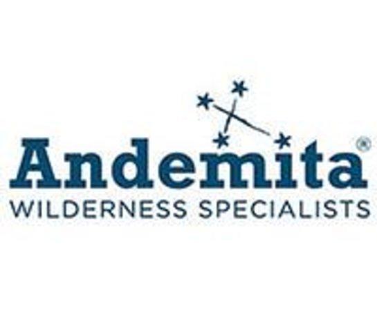 Andemita: company logo