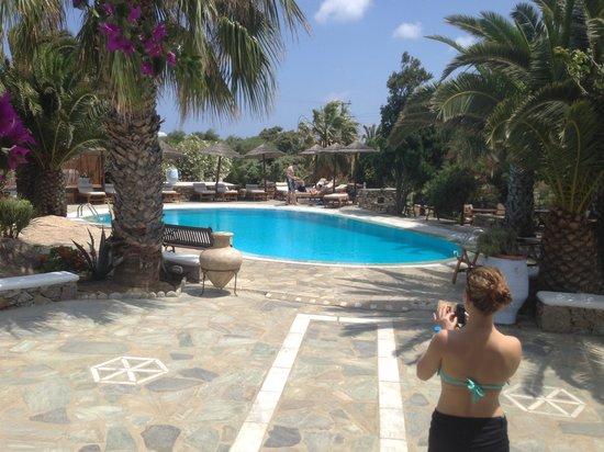 Zephyros Hotel: Pool