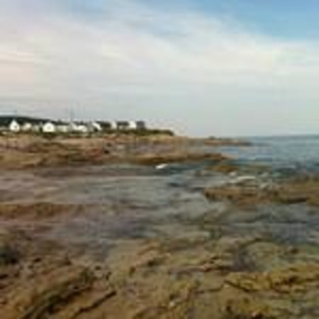 The Point Cottages by the Sea: View of the cottages from the water