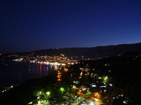 Yalta Intourist Hotel: вид на город