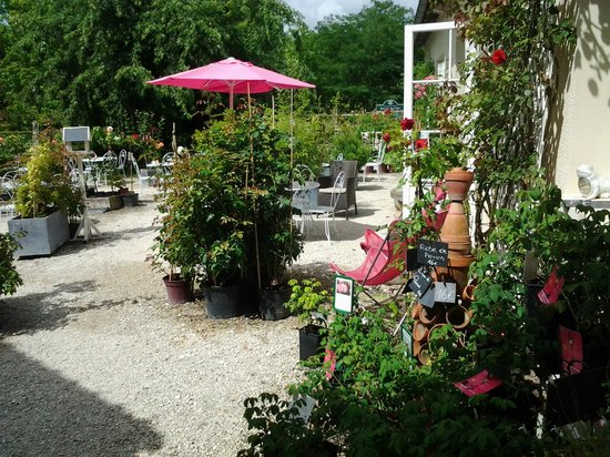 La Roseraie de Provins: la terrasse