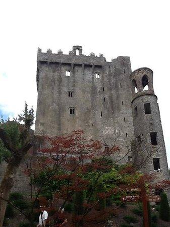 Blarney Woollen Mills Hotel: blarney castle