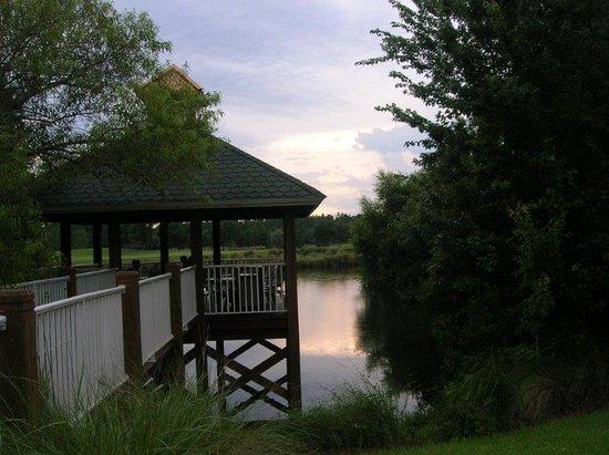 Grande Villas at World Golf Village: grounds at Grande Villas