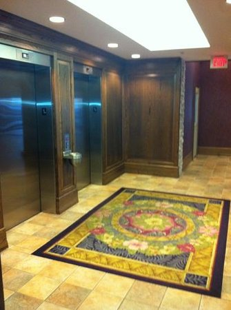 Comfort Inn Lundy's Lane: Interior Elevators