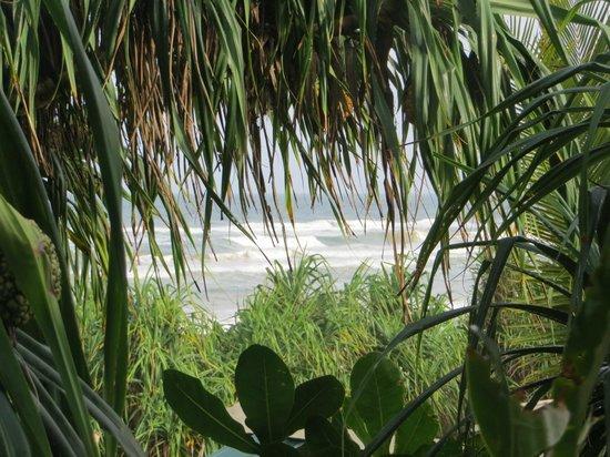 Hotel Marina Bentota: Vue mer