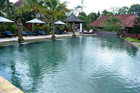 Salt water infinity pool picture of cendana resort and for Saltwater endless pool