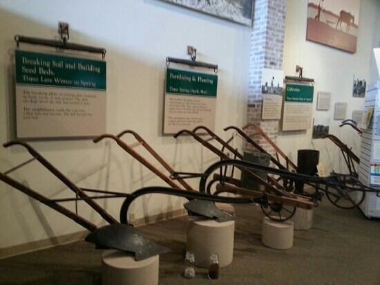 Plantation Agriculture Museum: display of plows