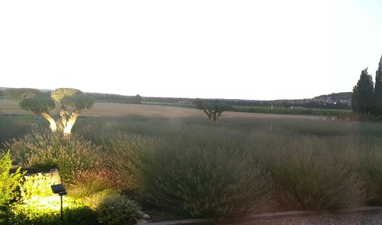 Entre Vigne et Garrigue: view from dining room at restaurant