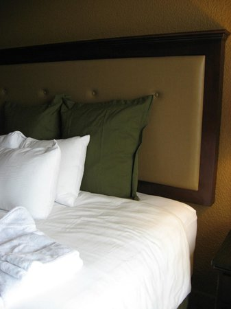 Crowne Plaza Jacksonville Airport Hotel: King size bed in Executive Level room