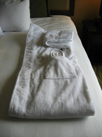 Crowne Plaza Jacksonville Airport Hotel: Luxury bathrobe provided in Executive Level room