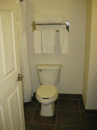 Holiday Inn Express Hotel & Suites Kingman : Toilet and towel rack