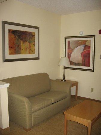 Holiday Inn Hotel and Suites Savannah-Pooler: Artwork in king room/suite #215