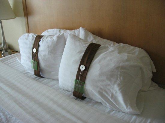 Holiday Inn Hotel and Suites Savannah-Pooler: Very comfy pillows in king room/suite #215